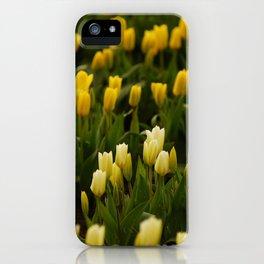 It's tulip mania! iPhone Case