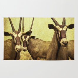 Hi, we are the antelopes. Rug