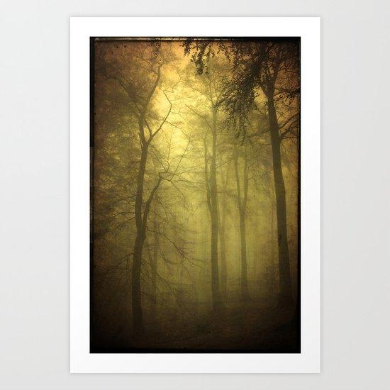 veiled trees Art Print