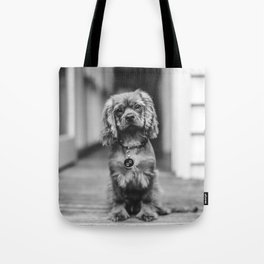 Cute puppy by Gez Xavier Mansfield Tote Bag