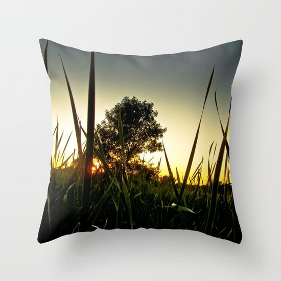 Slice of the Sky Throw Pillow