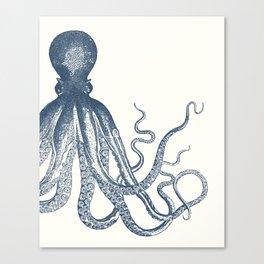 Offset Octopus Canvas Print
