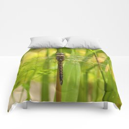 Dragonfly In The Reeds... Comforters