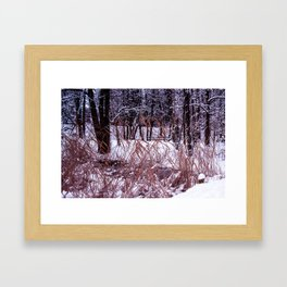 Nix in parco Framed Art Print