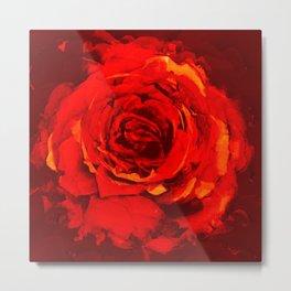 rose passion Metal Print