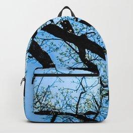 Spring Lines Backpack