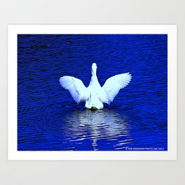 White Goose Wingspan (Chicago North Pond Collection) Art Print