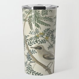 Robert Jacob Gordon - Acacia karroo Hayne or Vachellia karroo - 1777-1786 Travel Mug