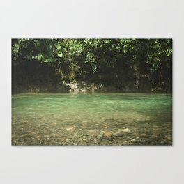 Tropical river, Sumatra Canvas Print