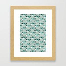 Shoal of bluefin tuna Framed Art Print