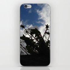 Eyes skywards iPhone & iPod Skin