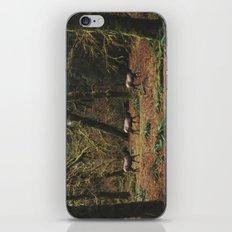 Rainforest Elk iPhone & iPod Skin