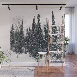 Winter day 11 Wall Mural