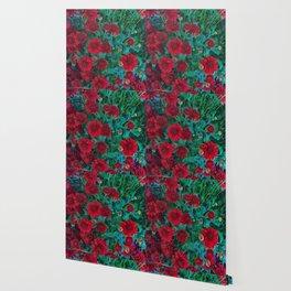 Red Mums Wallpaper