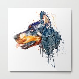 Doberman Head Metal Print