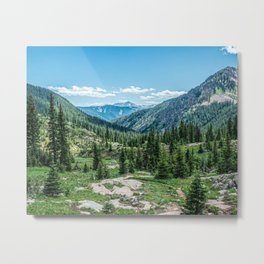 Colorado Wilderness // Why live anywhere else? Amazing Peaceful Scenery with Evergreen Dusted Hills Metal Print