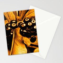 Olapalapa Stationery Cards
