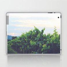 Dusty Vineyard Laptop & iPad Skin