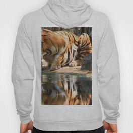 Tiger Reflection Hoody