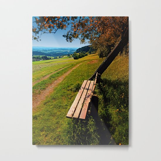 The bench and the summer Metal Print