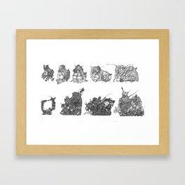 Evolution Of The Squirrel Framed Art Print