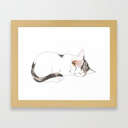 Sleeping Kitten Framed Art Print
