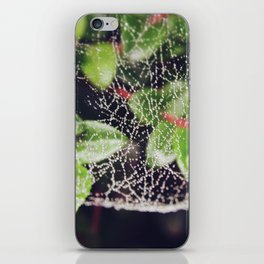 The Spider's Web iPhone Skin