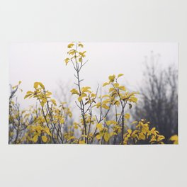 Yellow Leaves No2 Rug