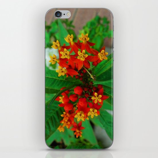 Orange and Yellow Flowers iPhone & iPod Skin