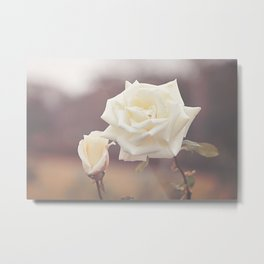 White Rose and Baby Metal Print