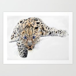 Local Eyes 'Leopard' Art Print
