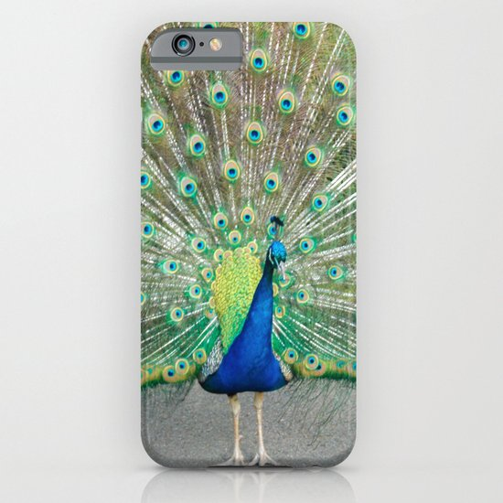 Coat of Many Colors iPhone & iPod Case