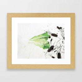 Lettuce Framed Art Print