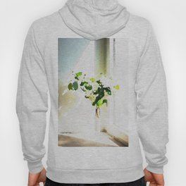 Vase of Flowers with shadows watercolor Hoody