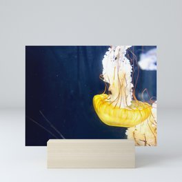 Jellyfish Sea Nettle Artwork Photo Mini Art Print