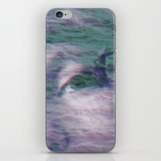 Kingdom of the little seagull iPhone & iPod Skin