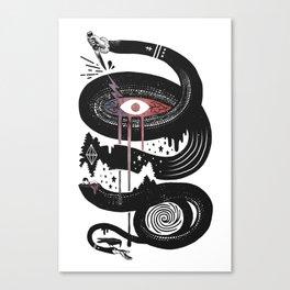 Intervolve Canvas Print