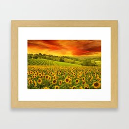 Tuscany Sunflowers and Sunflower Fields and Vineyards Italian Red Sunset landscape painting Framed Art Print