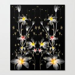 Frangipani floral abstract Canvas Print