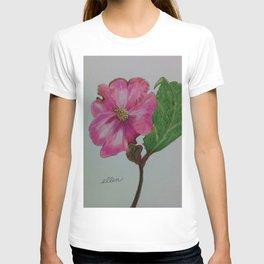 Japanese camellia, camellia, botanical art, flower, pink flower, T-shirt