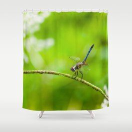 Perched Dragonfly  Shower Curtain