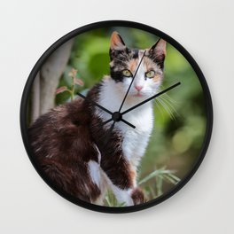 Are you meowing to me? Wall Clock