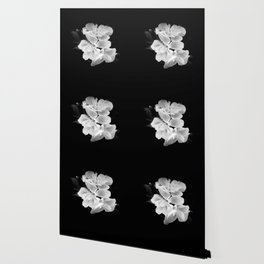 geranium in bw Wallpaper
