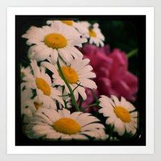 Peony and Daisies ttv photo Art Print