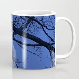 Hawk in Tree Coffee Mug