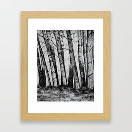 The Row  Framed Art Print
