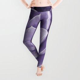 succulent Blossom violet color Leggings