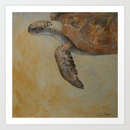 Cruising Turtle Art Print