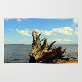Metung ~ Lake King Rug