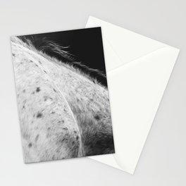 Appaloosa Stationery Cards